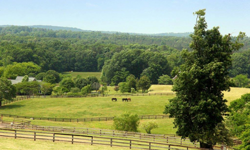 Buy Equestrian Properties