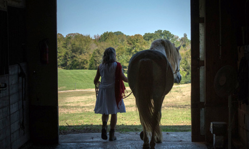 Sell Equestrian Properties